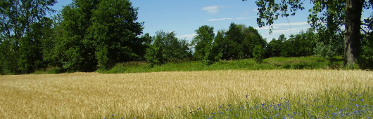 paesaggi-rurali-storici-toolbar