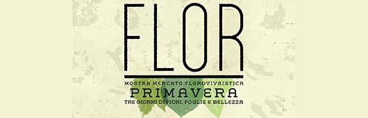 toolbar-flor-primavera-2018